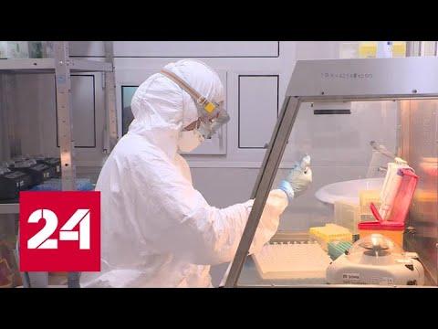 Бесплатный и самый масштабный в мире: в Москве начинается скрининг на антитела к COVID-19