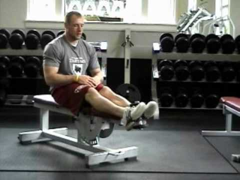 how to anterior plate raise