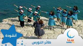طائر النورس - إيقاع - من ألبوم طائر النورس   قناة سنا SANA TV