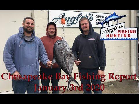 Chesapeake Bay Fishing Report: January 3rd 2019