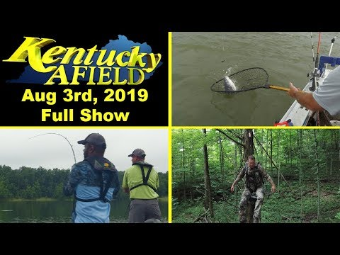 August 3rd, 2019 Full Show - Catfishing Below McAlpine, Bass In The Jumps, Lock On Stand Safety