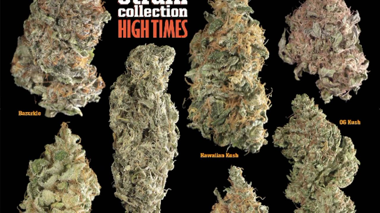 Seeds strains guide 2010 youtube for Time magazine subscription cancellation