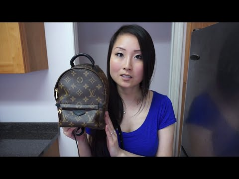 Louis Vuitton Palm Springs Mini Backpack | Reveal + Chat