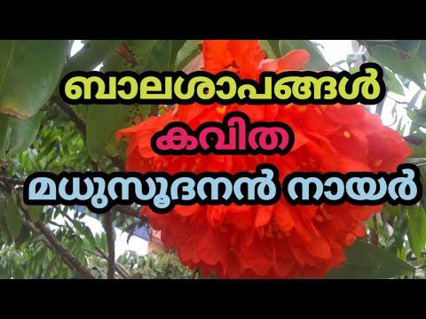 Malayalam Kavitha, Balasapangal -Madhusoodanan Nair, ബാലശാപങ്ങള്