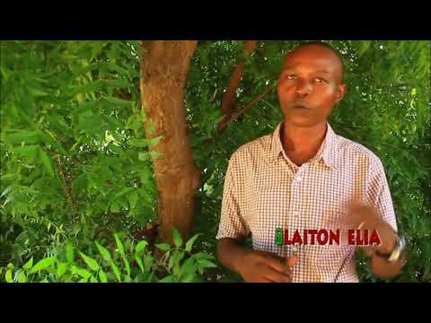 Download Safari ya kutisha kutafuta utajiri simulizi Laiton Mtafya sehemu, 2'b