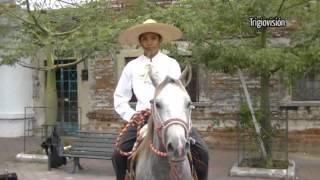Ameca, Jalisco. DÍA DEL CHARRO 2012.