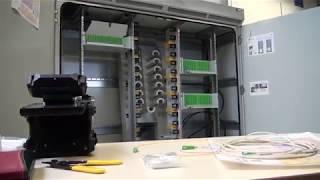 Inauguration du plateau Fibre Optique à Guynemer