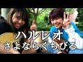 さよならくちびる / ハルレオ 【cover】