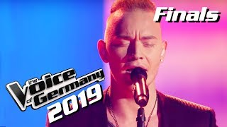 Adele - Someone Like You (Erwin Kintop) | The Voice of Germany 2019 | Finals
