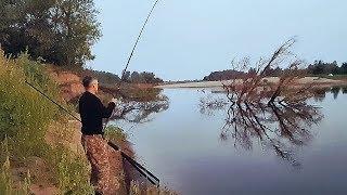Закинул ночью на ракушку утром проснулся весь берег Рыбалка на реке Ахтуба 2 часть