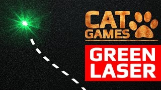 CAT GAMES - GREEN LASER (ENTERTAINMENT VIDEOS FOR CATS TO WATCH)