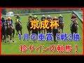 【無料予想】京成杯 2018年 サイン読みでの軸馬はこちら!