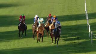 Vidéo de la course PMU TROPHEE DES MILERS