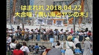 横浜の日本丸メモリアルパークで、4月22日に開催されたガズレレイベント...