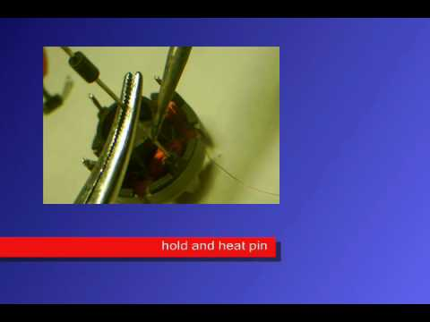 Free Energy Step By Step Instuctions part 1