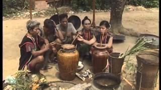 Lễ Cúng Trỉa Lúa Của Người Brâu - [Lễ Hội Du Lịch Văn Hóa Việt Nam]