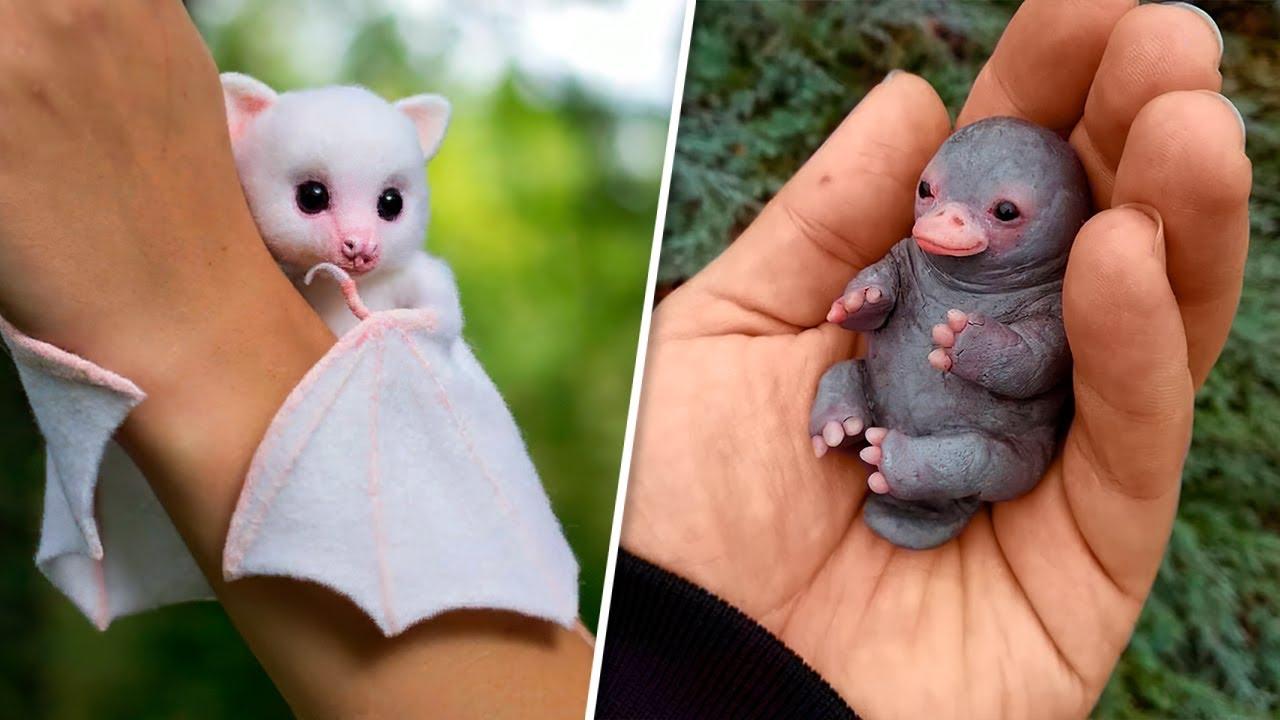 9 Fofos Animais Exóticos Que Você Vai Querer Levar Para Casa Com Você