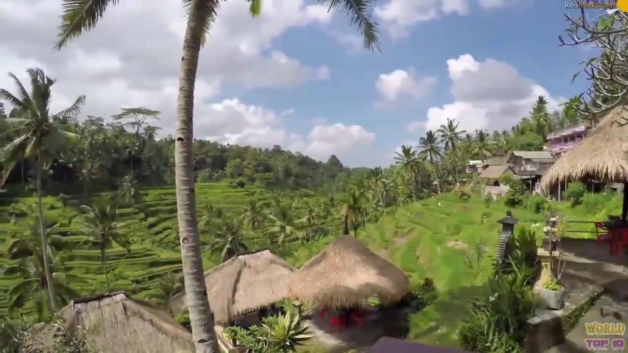 Villa Disewakan Di Ubud Bali Junjungan Suite Villa Youtube