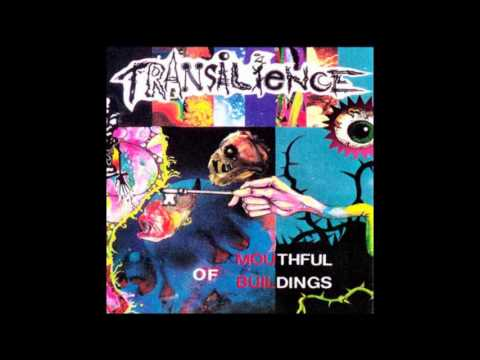 Transilience   Feed My Senses