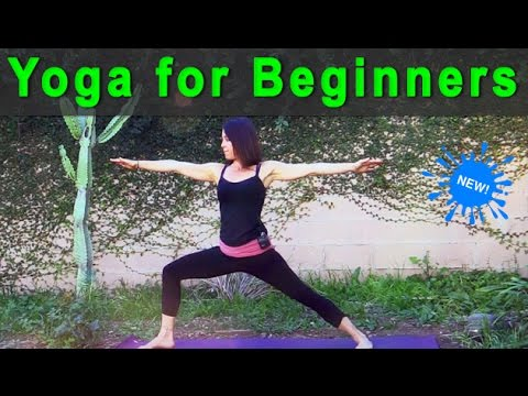 Yoga for Beginners   an introduction to beginners yoga (26 min) 💗