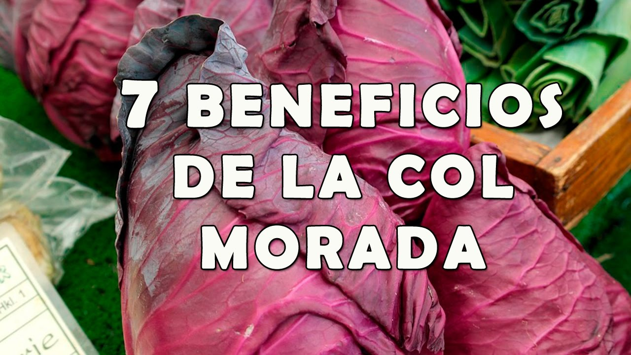 7 Increibles Beneficios de la Col Morada para la Salud - YouTube
