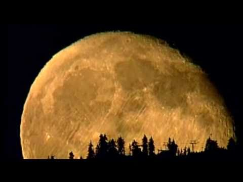 CTV Vancouver: Big Moon Rising