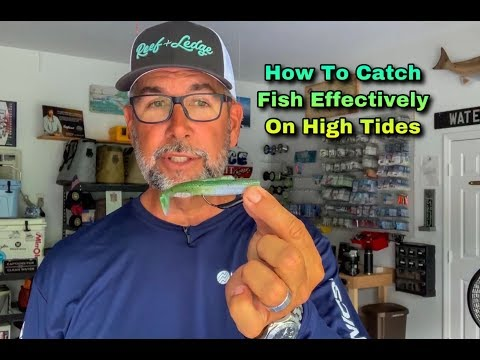 How To Catch Fish Effectively On High Tides