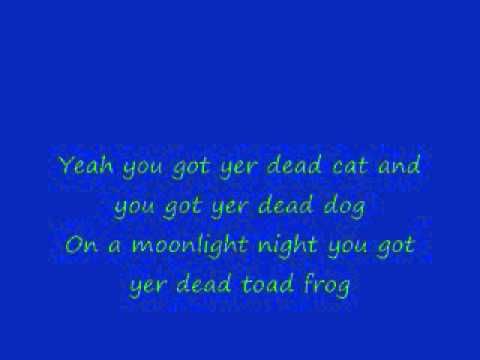 Dead skunk in the middle of the road (lyrics)