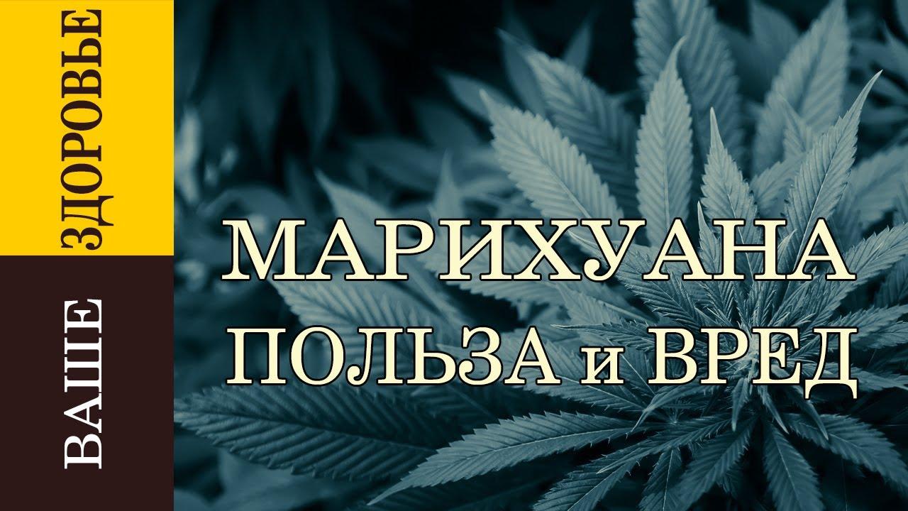 Документальный фильм марихуану i сажать коноплю