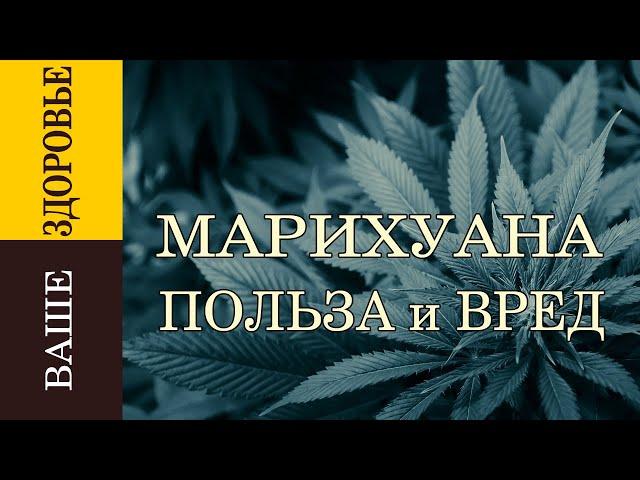 Курение марихуаны вред или польза сан диего марихуана