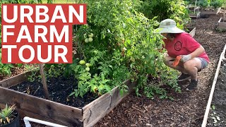 Sustainable Agriculture | Urban Farming Tour