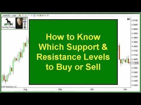Forex youtube videos