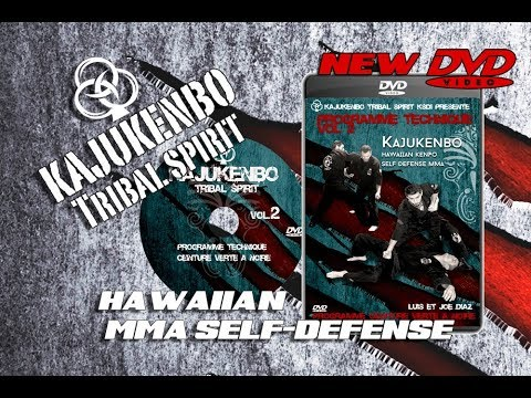 SELF DEFENSE KAJUKENBO Tribal Spirit DVD vol2