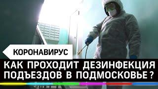 В Подмосковье проверили как дезинфецируют подъезды от коронавируса
