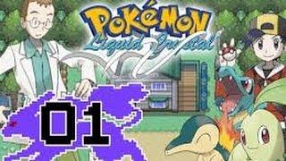 Pokemon Liquid Crystal Hardlocke Ep.1 - TENGO UN HATER PA'TODA LA VIDA