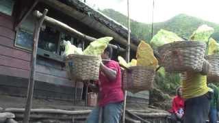 Indonesia volcano adventure - Part 9, Kawah Ijen Sulphur Mines and Acid lake