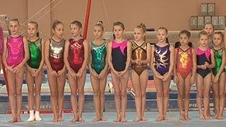 Первенство области по спортивной гимнастике