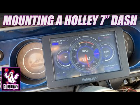 Holley 7