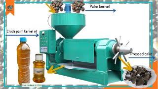 500kg per hour palm kernel oil expeller machine, palm kernel oil extractor machine working video