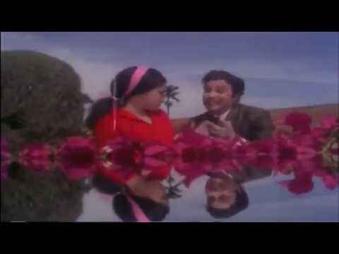 பட்டிக்காடா பட்டணமா  | Pattikada Pattanama | Maattukara Velan | M.G.R, Jayalalitha | Tamil  Song