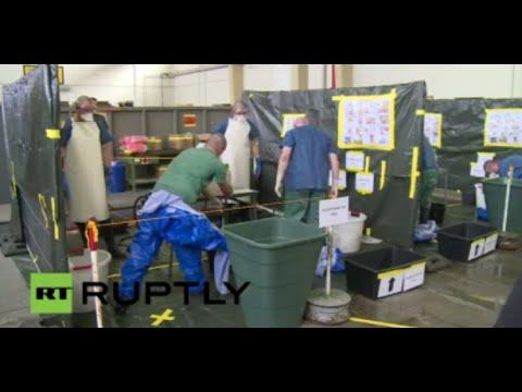 LIVE - Watch as German volunteers prepare to fight Ebola in West Africa