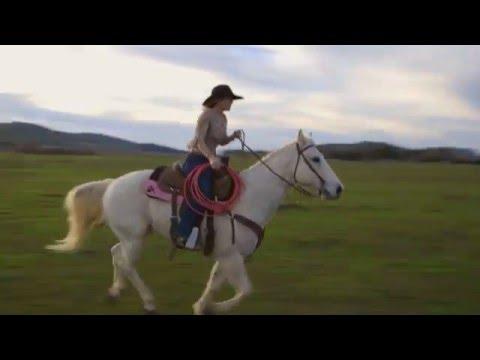 Harris Personal Injury Lawyers – Tara Twisselman Super Bowl Commercial
