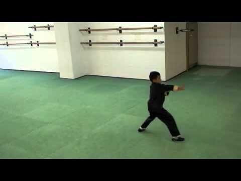 Brandon 7 years old / Chin Woo Kung Fu Zürich