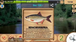 Рыбалка в лесной реке