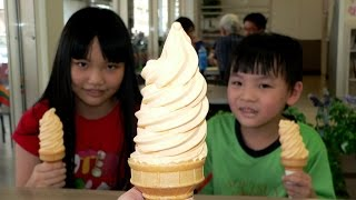 7-ELEVEN Hokkaido Ice Cream(Yubari Melon),Kaohsiung,Taiwan 7-11北海道霜淇淋(夕張哈密瓜)