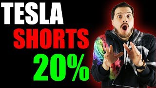 Hedge Funds Bet Big Tesla Stock Will Collapse! *Hint* Big Mistake!