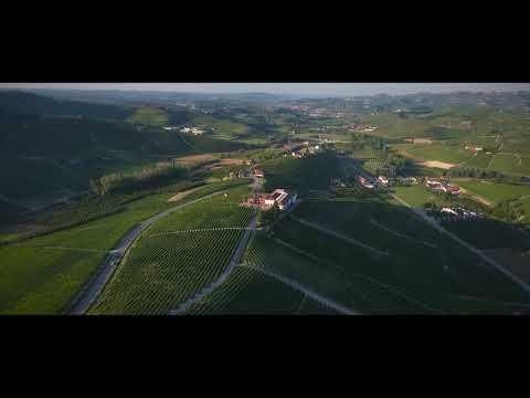 Fratelli Borgogno  Vineyard and cellar on the top of Cannubi