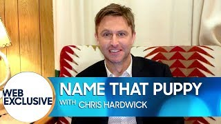 Chris Hardwick Names Puppies After Harry Potter Characters