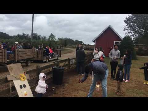 Stepping Stone Montessori School Fall Farm Day