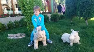 ИСКУССТВО ЗА МИНУТУ Обзор Скульптуры Слон-Носорог-Крокодил Одесса Аркадия #артодесса